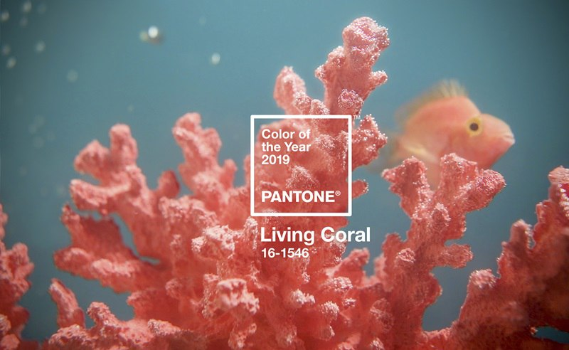 Color Harmonies And Color Of The Year 2019 - Living Coral - Boutique Retouching - PRIMARY PantoneCOY2019 coral bluegreen SWATCH