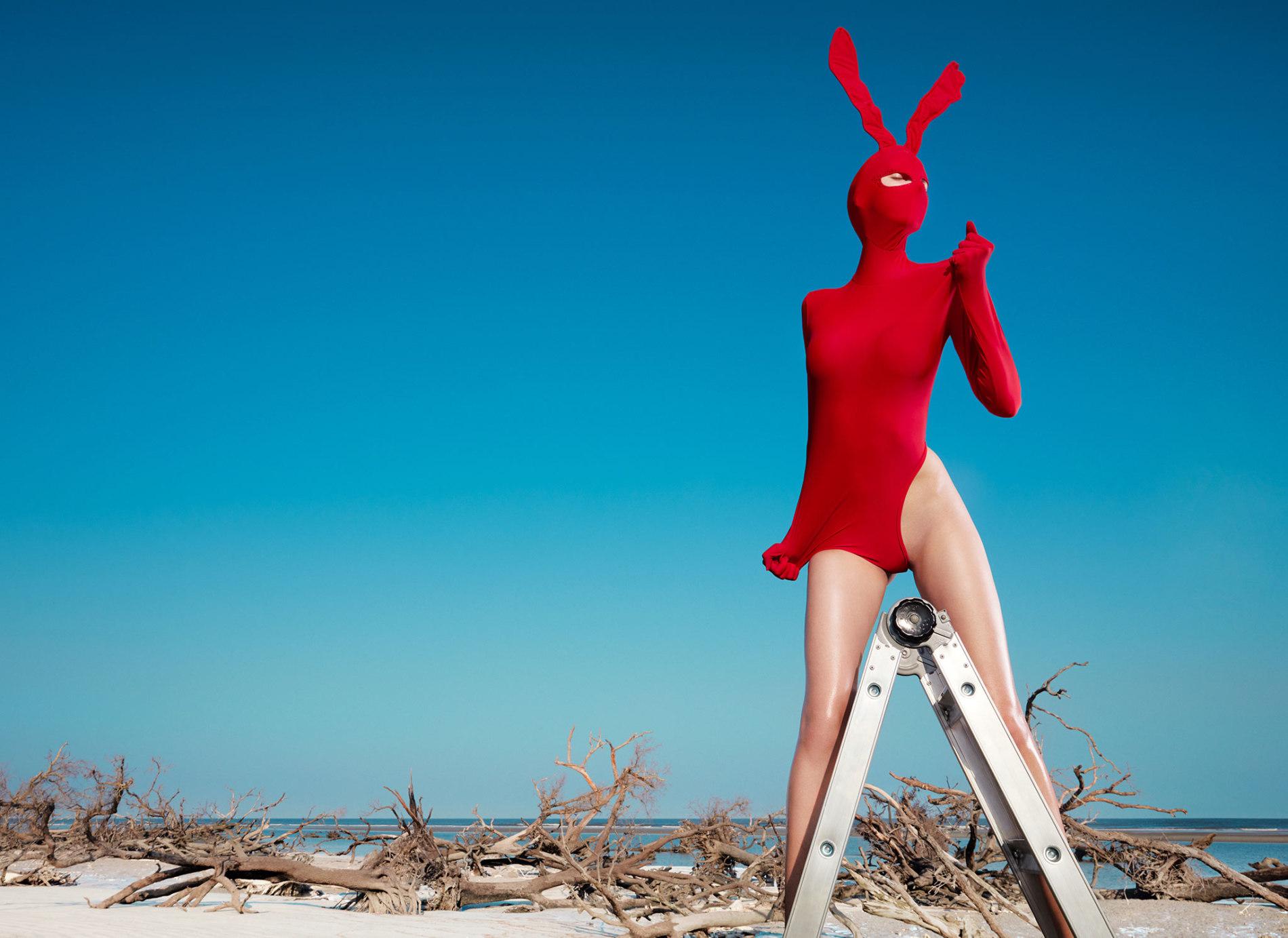 Boutique Retouching rabbit1final Blog