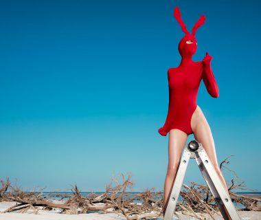 Boutique Retouching rabbit1final-p0jnxlxc29b0jf19tieyquwy9git9dt1maje2zhim8 High-End Retouching Blog | 101 Retouching & Best Practices